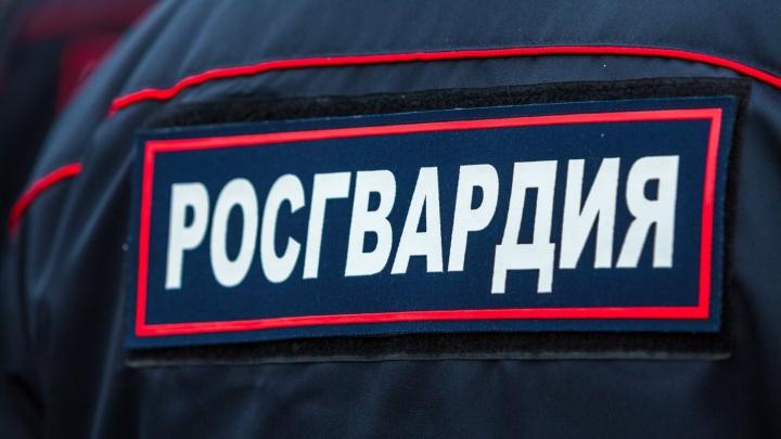 Пытались спрятаться за досками: в Ярославской области неудачливых грабителей поймали росгвардейцы