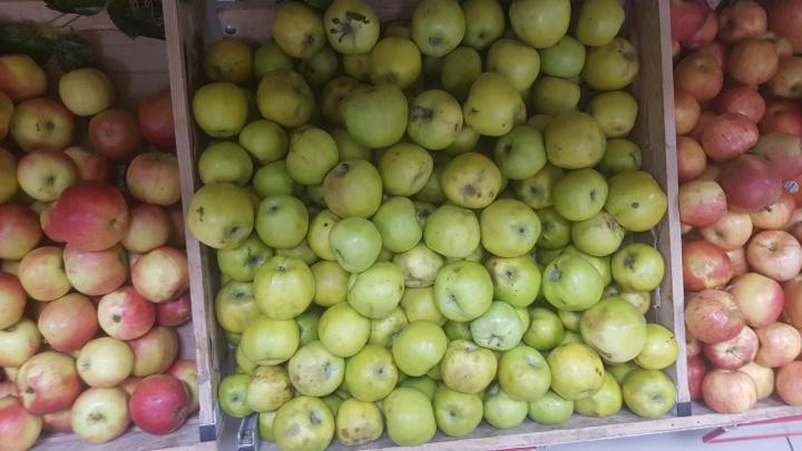 В Курганской области уничтожили больше тонны санкционных яблок