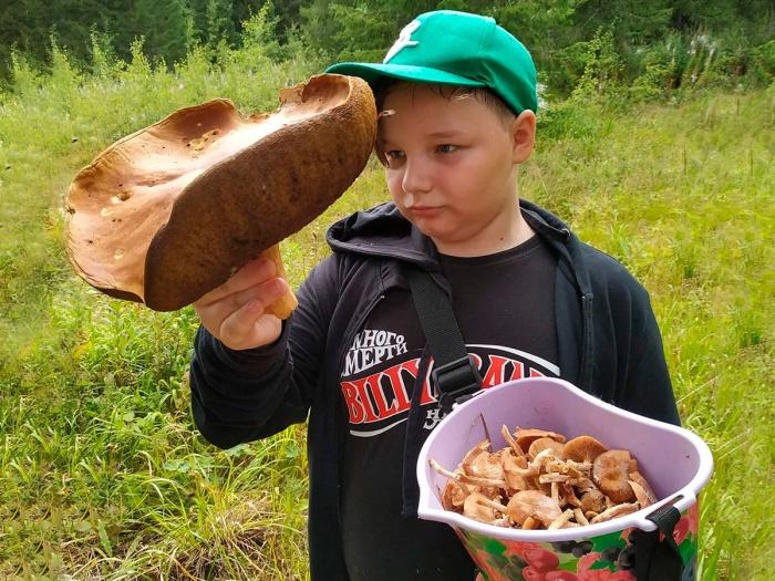 Такие грибы есть нельзя, но зато можно сделать отличное фото!