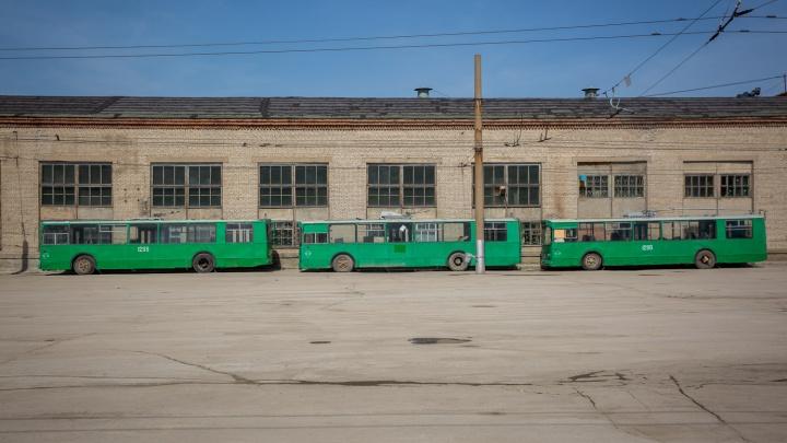 Троллейбус без рогов и автобус без бензина: власти обновят городской общественный транспорт