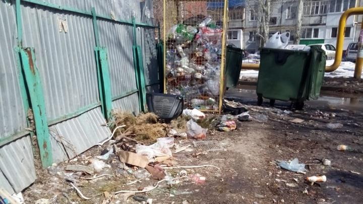 Регоператор Самарской области: «Мы не обязаны подбирать мусор с земли!»
