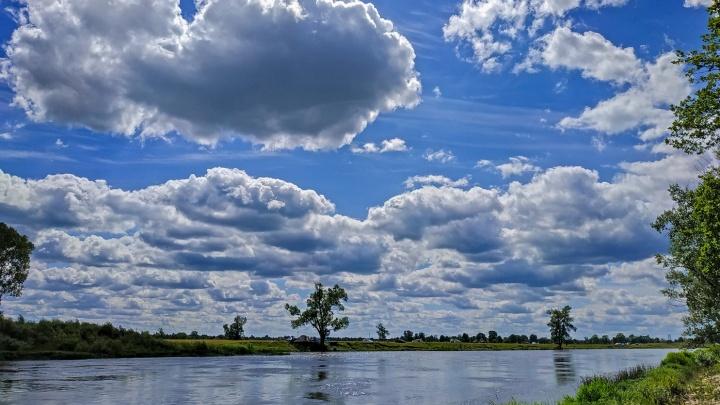 Ветер усилится, но в целом станет теплее: синоптики рассказали о погодных изменениях в Башкирии