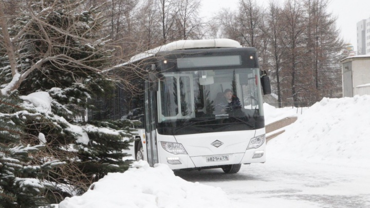 «Снизит выхлопы в пять раз»: в Челябинске по популярному маршруту запустят экоавтобус