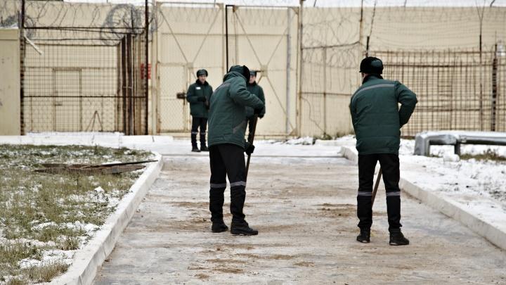 Насвадьбе в Архангельске пьяный гость ударил молотком жениха: его ждут шесть лет колонии