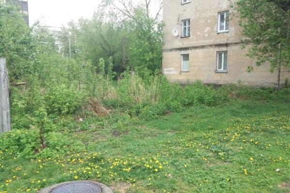 Место, где стоял дом на Некрасова, 45А, уже поросло травой