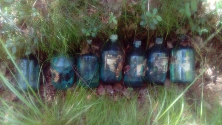 «Никому и дела нет»: на бывшем танкодроме архангелогордцы наткнулись на свалку химвеществ
