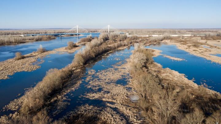 В Самарской области апрельские морозы побили рекорды двадцатилетней давности