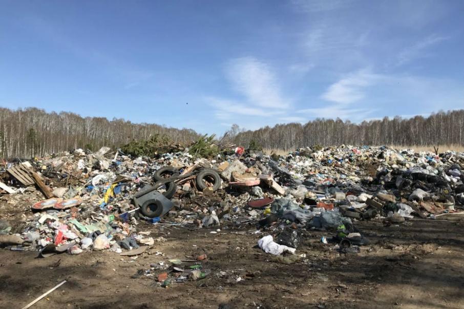 Рекультивировать зловонную территорию начнут с приходом нового регоператора по работе с мусором