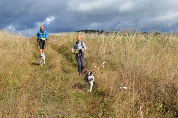 Десятки спортсменов всё воскресенье бегали по горам Новосибирской области