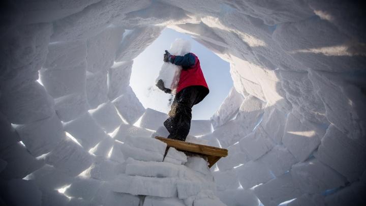 С видом на море: новосибирцы построили снежные дома на берегу Обского