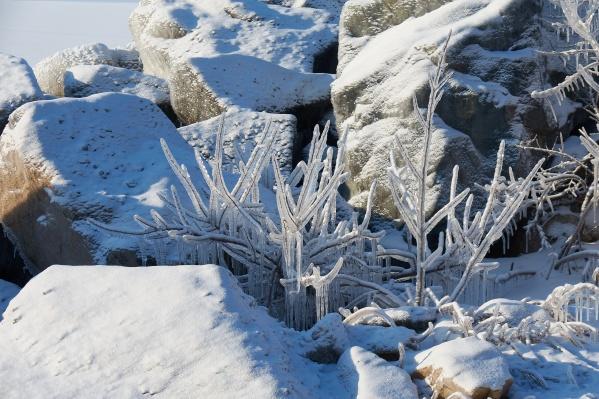 Льдом сковало каждую деталь берега Обского моря