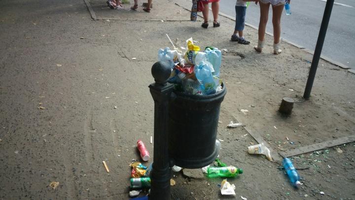 Бизнес-леди из Омска приговорили к колонии за продажу единственного в городе мусорного полигона