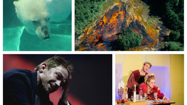 Пять вечеров: селфи в музее, фуршет в театре и загадки в огороде