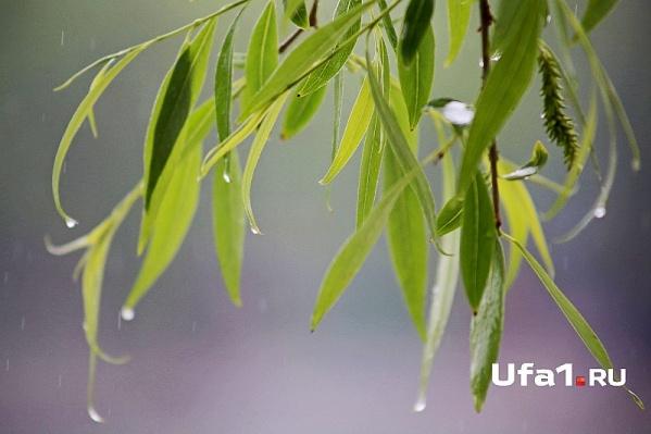 Возможны дожди с грозами