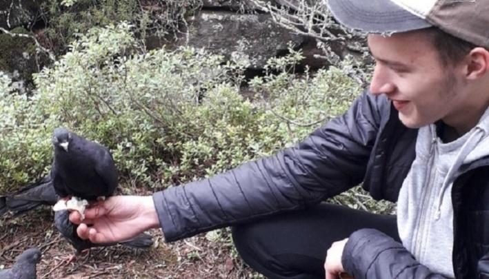 Из Каменного города забрали ручных голубей, которых оставили после съемок «Сердца Пармы»
