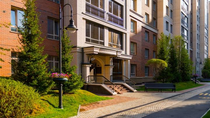 Около площади Калинина построили уникальные дома с соболями