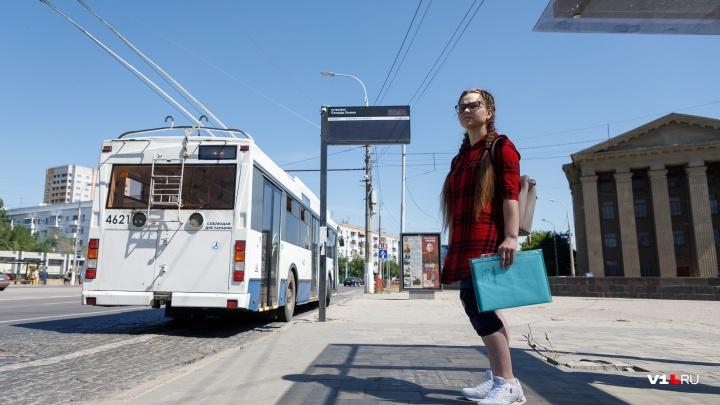 «Я навсегда боюсь визга машин»: виновница аварии на остановке избегает встреч со сбитой студенткой