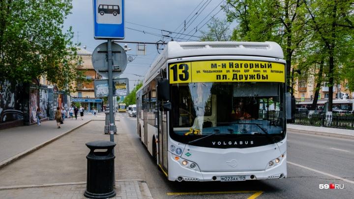 В Перми открыли движение автобусов по улице Пушкина
