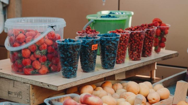 У кого больше: тюменцы показывают, сколько грибов и ягод насобирали за эти выходные