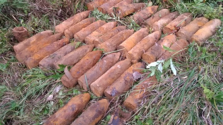 В Ярославской области возле железнодорожных путей нашли 33 артиллерийских снаряда