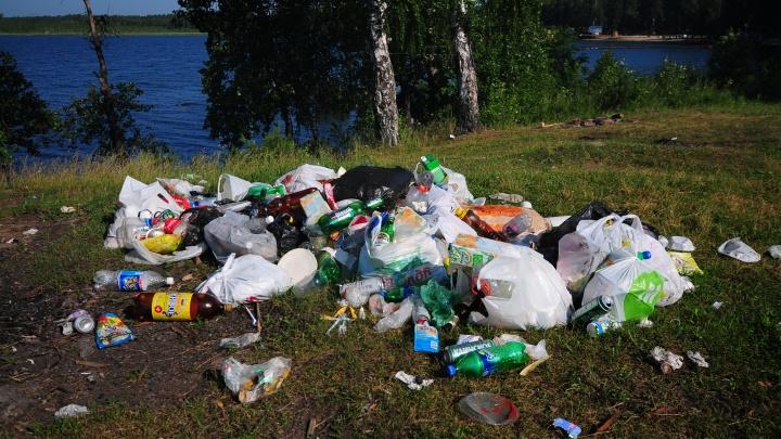 «Мусор сам в лес не приходит»: кому писать про помойку у озера и бардак на контейнерной площадке