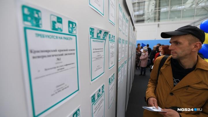 Средняя зарплата в крае выросла до 48,2 тысячи рублей: кто получает больше всех