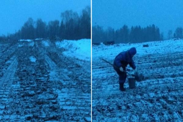 Сильный химический запах от земли обнаружили в конце января