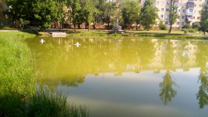 Жители Самары выпустили карасей в озёра на Аэродромной и в парке Гагарина