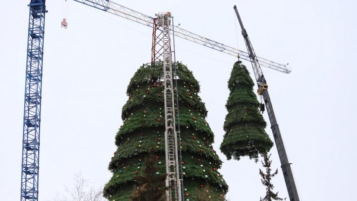 На Театральной площади начали разбирать новогоднюю елку