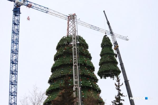 Демонтаж елки начался 28 января
