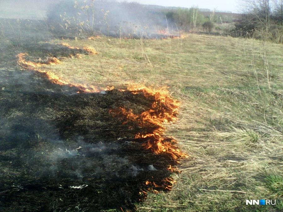 Завчерашний день вНижегородской области зарегистрировано 8 случаев возгорания сухой травы