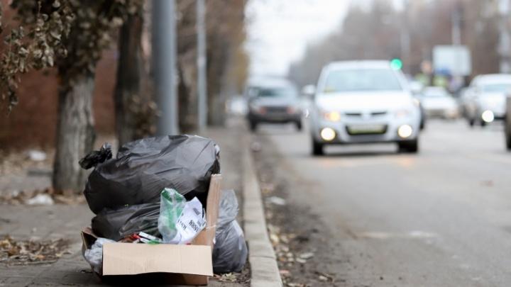 Предприниматели заплатили почти пять миллионов рублей штрафов за мусор с начала года