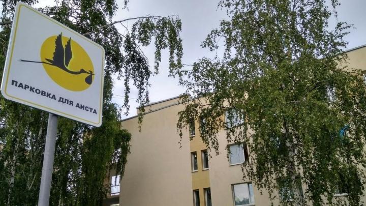 Возле роддома в Екатеринбурге сделали парковку для аистов
