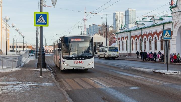 В Перми автобус Volgabus сбил 21-летнюю девушку на пешеходном переходе