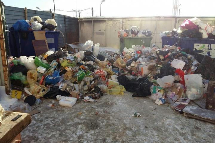 «Доплату получала одна компания»: антимонопольщики признали мусорный сговор в Челябинской области