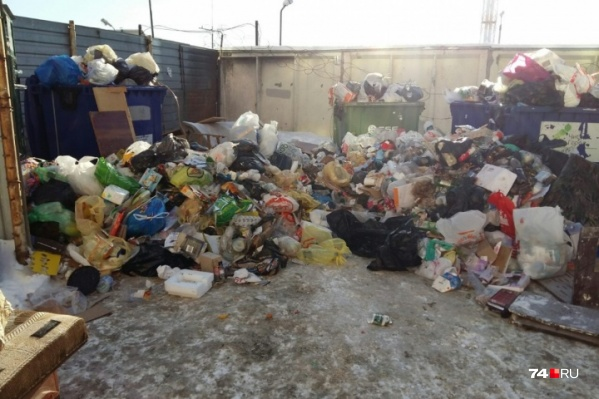 Чиновники так хитро составили документы, что доплату за обработку отходов получала только одна компания