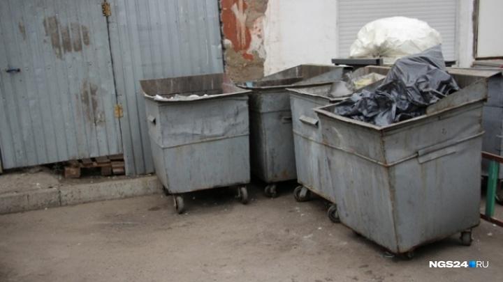 На заводе по сортировке мусора перед Новым годом нашли тело крошечной девочки