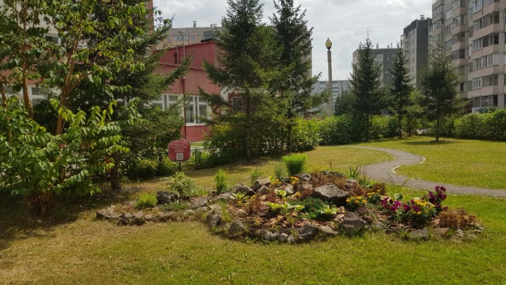 В школе на Взлётке открыли экопарк с сибирскими растениями