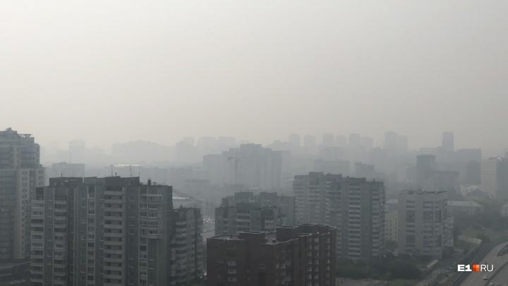 В Гидрометцентре объяснили, откуда могли взяться пелена и запах гари в Екатеринбурге