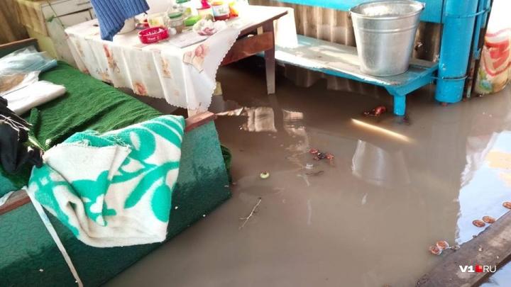 Волгоградка: «Мы после потопа с двоюродным братом остаёмся на улице»
