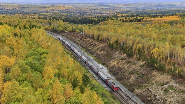 Успевайте насладиться: через три дня в Екатеринбурге закончится бабье лето