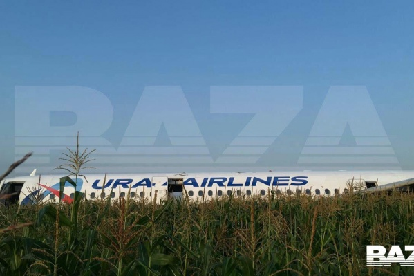 Самолет сел в Московской области