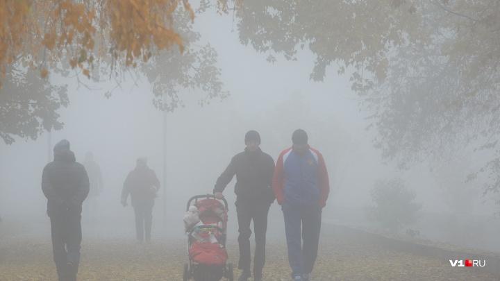 В Волгоградской области ожидаются первые заморозки и туманы
