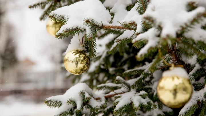 Успеть до боя курантов: составили список важных дел на декабрь