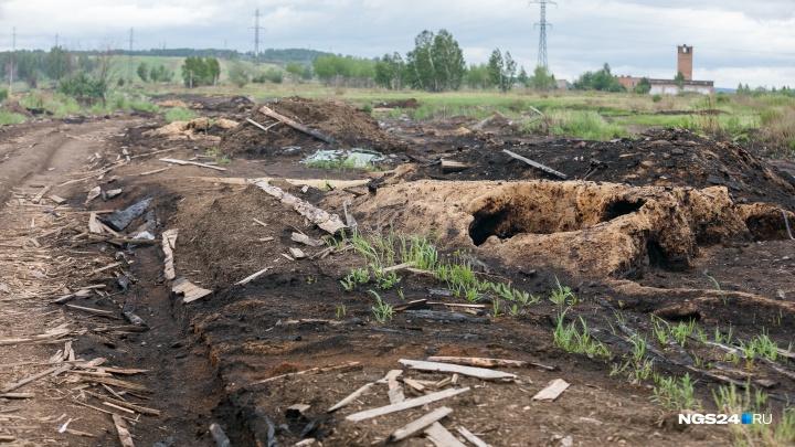 Чиновники края рассказали, как борются с горящими свалками отходов лесопилок в Канске