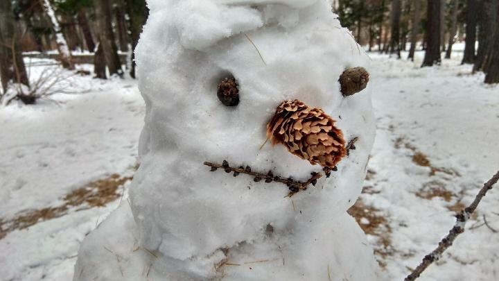 Чебурашка, Олаф из «Холодного сердца» и Снегурочка: смотрим, что слепили екатеринбуржцы на выходных