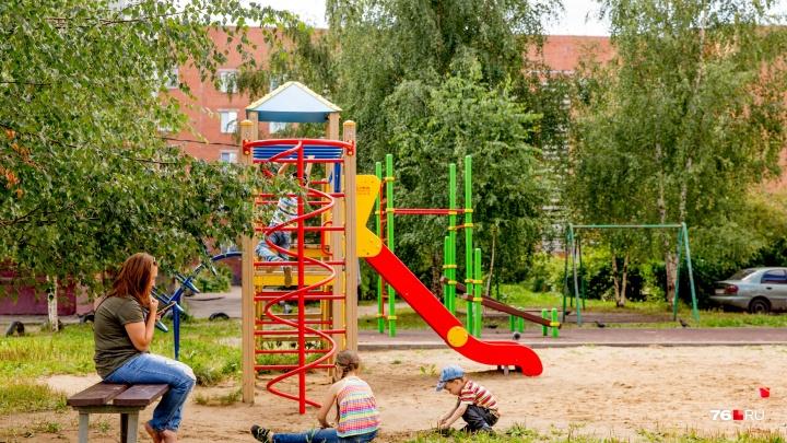 Ярославские чиновники сравнили плату за детские площадки с пирожками