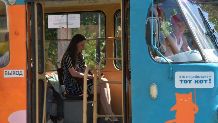 """""""Не могли уехать полчаса"""": на Сортировке встали трамваи"""