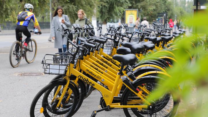 В Волжском нашли «норку» со сбежавшими от волгоградских вандалов велосипедами Mobee