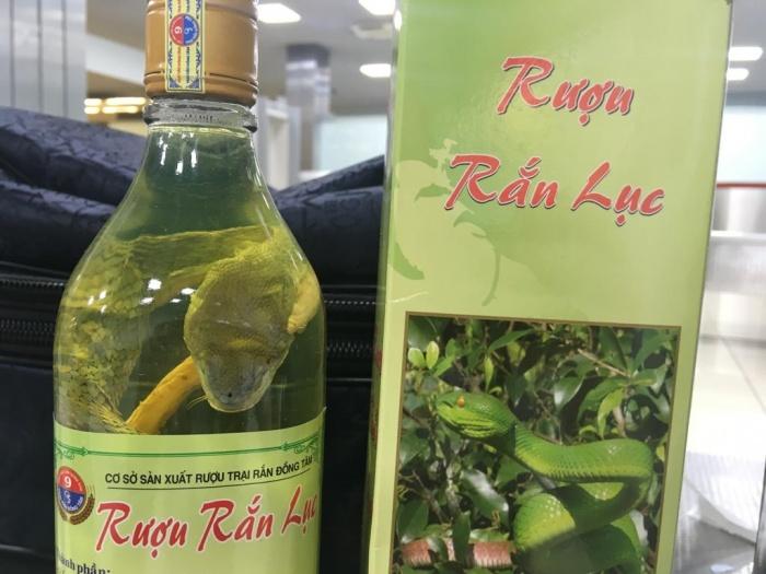 Туристы привезли из Вьетнама настойку на редких видах змей, которая применяется в народной медицине
